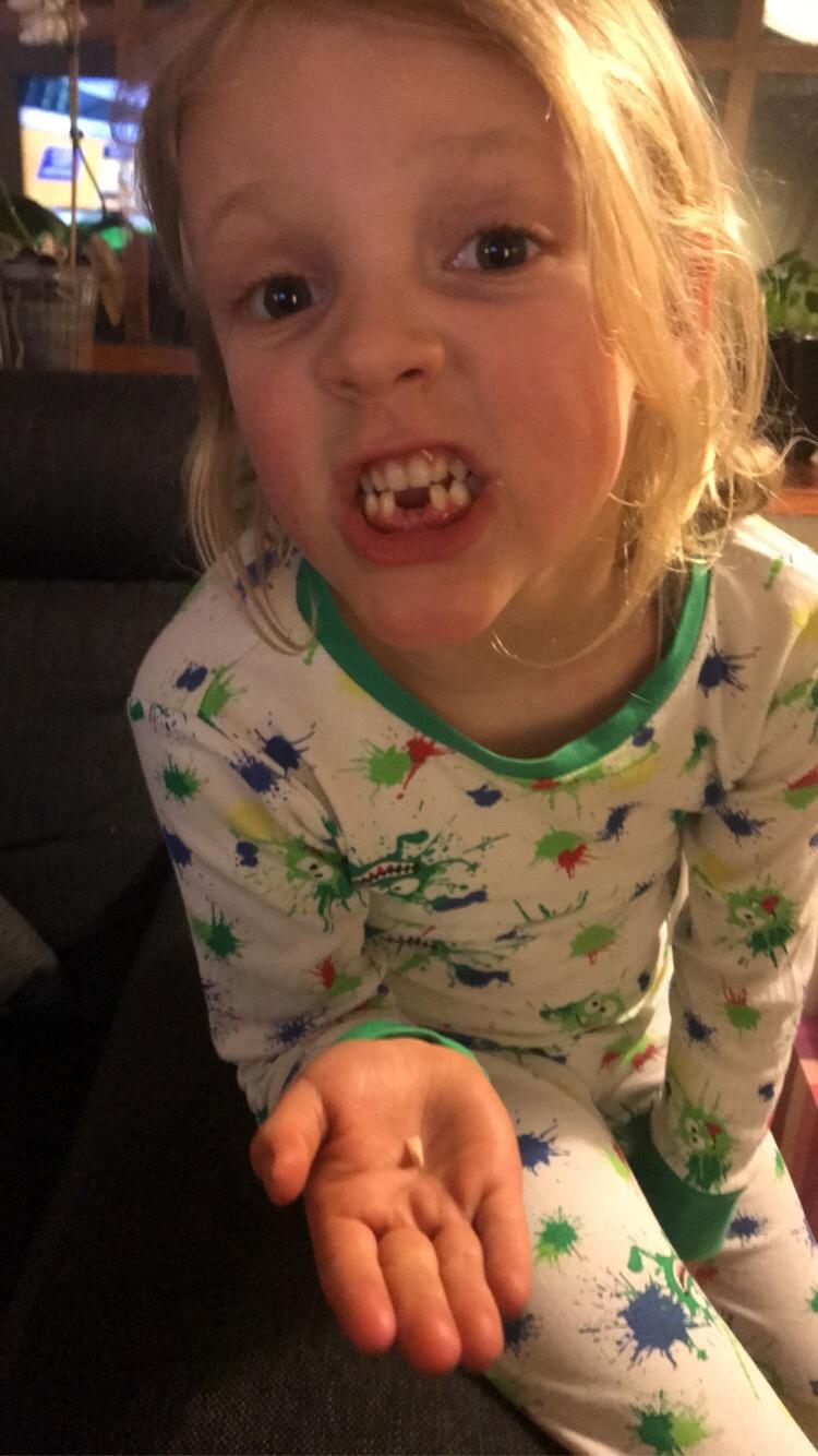 Sigsen med sin tand